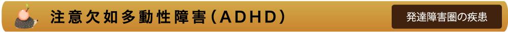注意欠如多動性障害(ADHD)